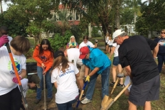 Tree Planting project at Edison-Ford Winter Estates (2)